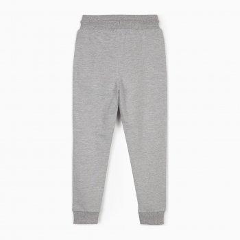Спортивные штаны Zippy ZB0403_487_12 Светло-серые