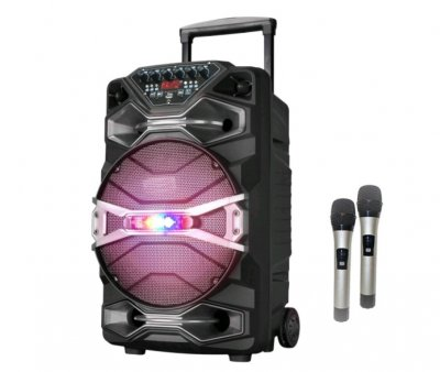 Активна акумуляторна акустика 1318SK Bluetootth/USB, 2 радіомікрофона