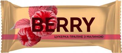 Упаковка конфет Світоч Berry Пралине с малиной 2 кг (7613038118741)