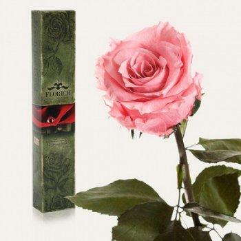 Долгосвежая троянда Рожевий Кварц 5 карат FOR Арт.120246
