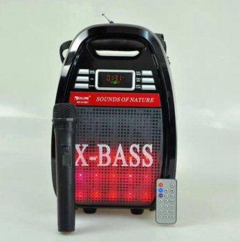 Колонка комбик Golon Bluetooth mp3 радиомикрофон пульт цветомузыка Golon RX-810 BT