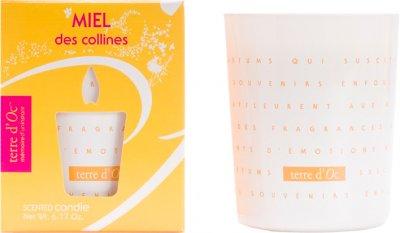 Парфумована свічка Terre d'Oc Високогірний мед 175 г (3700324424366)