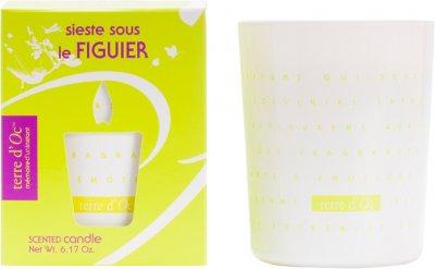 Парфумована свічка Terre d'Oc Сієста під інжиром 175 г (3700324424380)