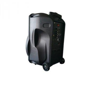 Колонка Ailiang Lige-AR15QK c FM,USB,TF і мікрофоном
