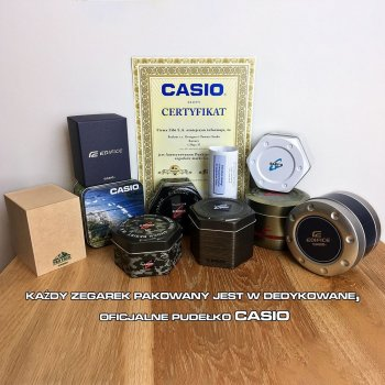 Годинник Casio WS-2000H-1AVEF