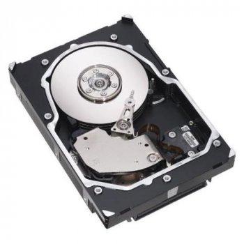 Жорсткий диск NetApp 300GB 15K FC (108-00156) Refurbished