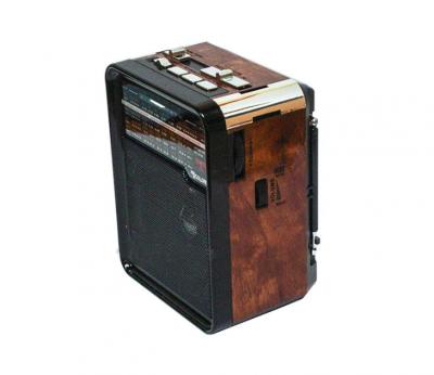 Акустическая система радио аккумуляторный с USB выходом колонка Чёрно-коричневый Golon (RX-9100)