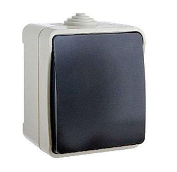 Выключатель одноклавишный ElectrO ВС20-1 УФ-защита IP54 2 шт (2VS2011654)