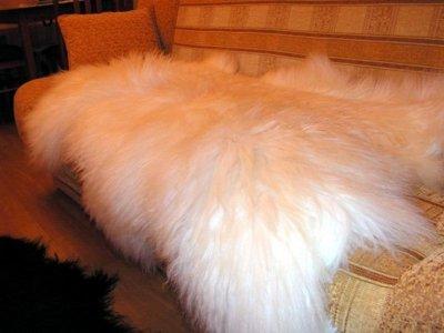 Шкура вівці Легит 1.25 х 0.75 біла (009)