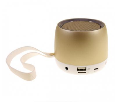 Беспроводная колонка Hopestar H17 аккумуляторная + Bluetooth 4.0, встроенное радио и поддержка MP3, WMA Золотистая (11329)