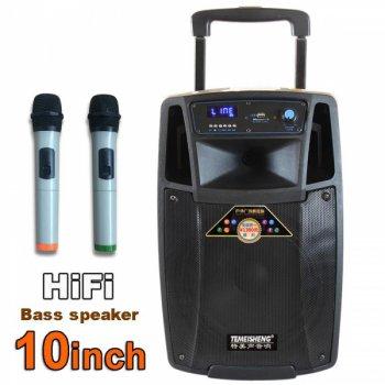 Акустические системы автономные Temeisheng SL1001, Bluetooth, USB-SD, 2 радиомикрофона