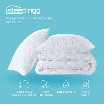Набір Sleepingg Ковдра всесезонна 200х220 + подушки 50х70 2 шт (4820227283231)