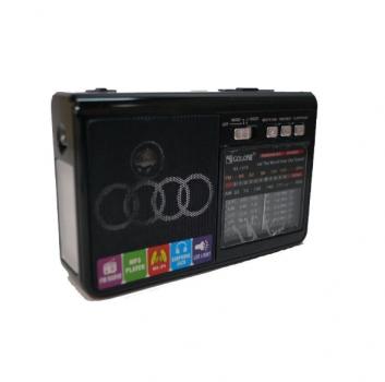 Радіоприймач акумуляторний колонка Golon RX-1313 MP3 USB Black SD