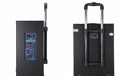 Колонка активная Tеmeisheng QX 1207 на аккомуляторе с двумя микрофонами Мощность 100Ватт