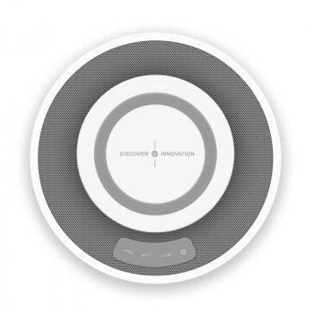 Портативная колонка Nillkin MC 2 (Bluetooth) Белый (56050)