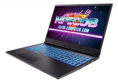 Ноутбук Dream Machines Clevo NP50DB (G1650-15UA61)