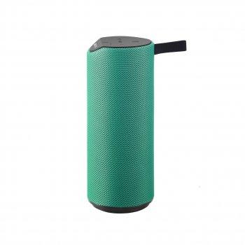 Портативная Bluetooth колонка Canyon CNS-CBTSP5G Green