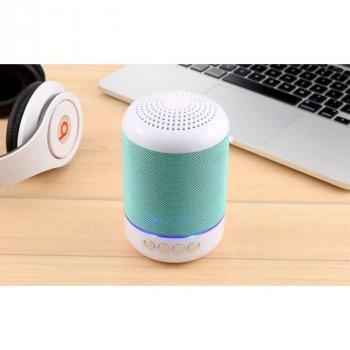 Портативна Bluetooth колонка T&G Green 115