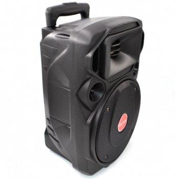Портативна Колонка Su-Kam BT 80D, з 2 мікрофонами 4384