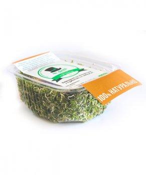 Мікрозелень гірчиці MR Green 100 г(30001)