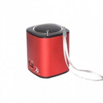 Колонка оортативная МР3 WSTER WS-259 Красная (00414)