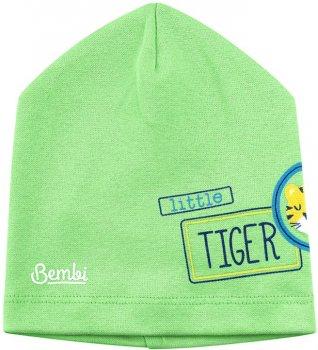 Демисезонная шапка Бемби SHP83 25083011619.600 46-47 см Зеленая (4823101629989)