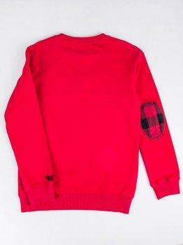 Свитшот Woolrich N041018-32 Красный