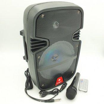 """Портативна колонка акумуляторна бездротова Bluetooth караоке акустика 8"""" з мікрофоном USB FM 40 Вт UKC RE-258"""