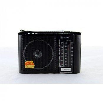 Радіо RX BT16, Радіоприймач від мережі і батарейок, Радиоколонка MP3 переносна