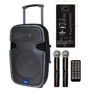 Мобильная акустическая система PA-15MUB Perfect