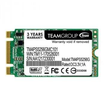 TEAM Lite M. 2 256 GB (TM4PS5256GMC101)