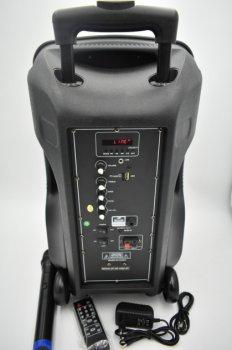 Акустична система акумуляторна Ailiang UF-AR-12QK
