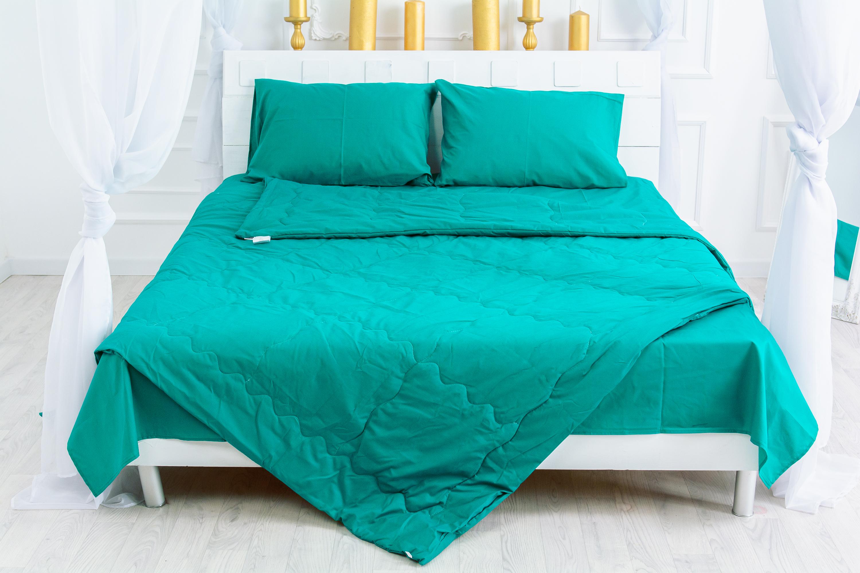 Акция на Одеяло антиаллергенное MirSon Летнее с Eco-Soft №2337 Caterina 110x140 (2200003027587) от Rozetka