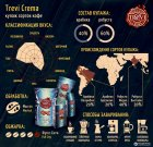Кава в зернах Trevi Crema 1 кг (4820140050163) - зображення 2