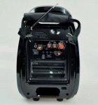 Колонка комбик Golon Bluetooth mp3 радиомикрофон пульт цветомузыка Golon RX-810 BT - изображение 5