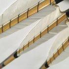 Стріла дерев'яна ВТ Legend Wrapped, 30#, 539467 - зображення 3