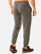 Спортивні штани DEMMA 786 50 Сірі (4821000036006_Dem2000000011134) - зображення 2