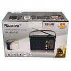 Цифровое мини радио GOLON RX-BT660T + BLUETOOTH Радиоприемник всеволновой портативный с телескопической антенной с USB mp3, WMA беспроводной FM/AM сетевой и аккумуляторный - изображение 6