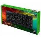 Клавіатура Razer Cynosa Lite Chroma (RZ03-02741500-R3R1) [56073] - зображення 4