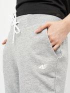 Спортивні штани 4F NOSH4-SPDD002-27M XS Cold Light Grey Melange (5903609089443) - зображення 4