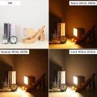Настольный светильник ( лампа ) деревянная собака 29,5 см - изображение 6