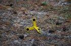 Мишень шагающая Сателит (509) - изображение 2