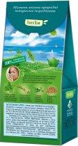 Упаковка чая Lovare Смесь травяного и плодово-ягодного со специями Мятный бриз 2 пачки по 20 пирамидок (2000006781116) - изображение 3