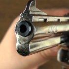 """Револьвер под патрон Флобера Alfa 441 (4.0"""", 4.0мм), никель-дерево - изображение 2"""