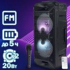 Музыкальная USB колонка Column 05 мощная портативная беспроводная с LED подсветкой + проводной блютуз микрофон для улицы и дома – переносная акустическая стерео система с аккумулятором Bluetooth + FM радио + AUX + microSD, Чёрный - изображение 1