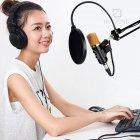 Студійний конденсаторний мікрофон для звукозапису Music D. J. M-800 – кращий бюджетний професійний студійний конденсаторний usb мікрофон для студійного запису голосу вокалу – Висока чутливість мікрофона - зображення 8