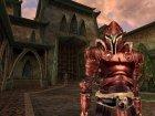 Игра The Elder Scrolls III: Morrowind Game of the Year Edition для ПК (Ключ активации Steam) - изображение 5