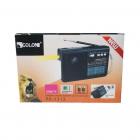 Радиоприёмник-колонка аккумуляторный Golon RX-1313 MP3 USB SD Черный - изображение 5
