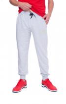 Спортивні штани URBAN SHSS4 UR (46) M Світло-сірий (AN-000054) - зображення 1